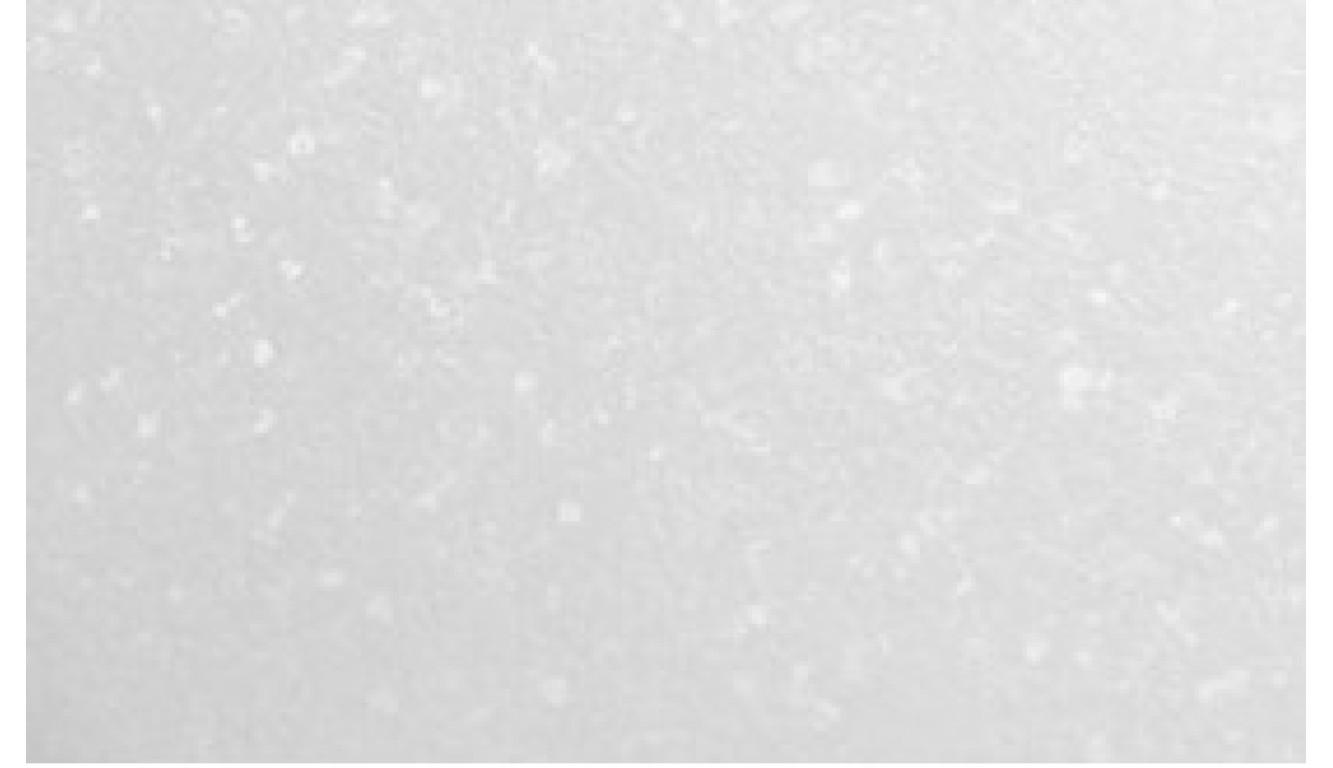 Столешница Бриллиант белый, 28 мм, 3 метра