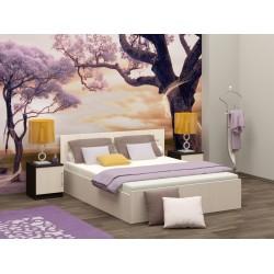 Кровать с матрасом Эконом 1.6x2.0 метра