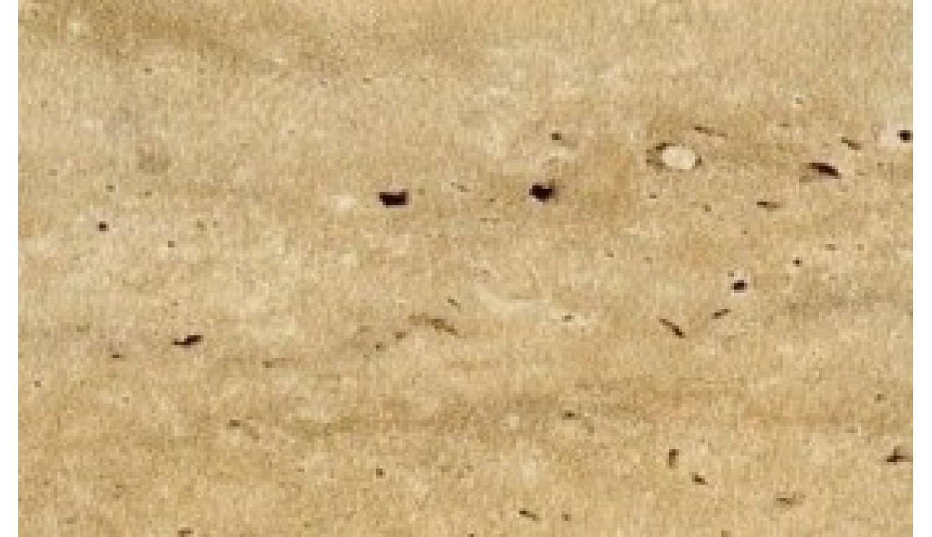 Столешница Травертин римский, 38 мм, 3 метра