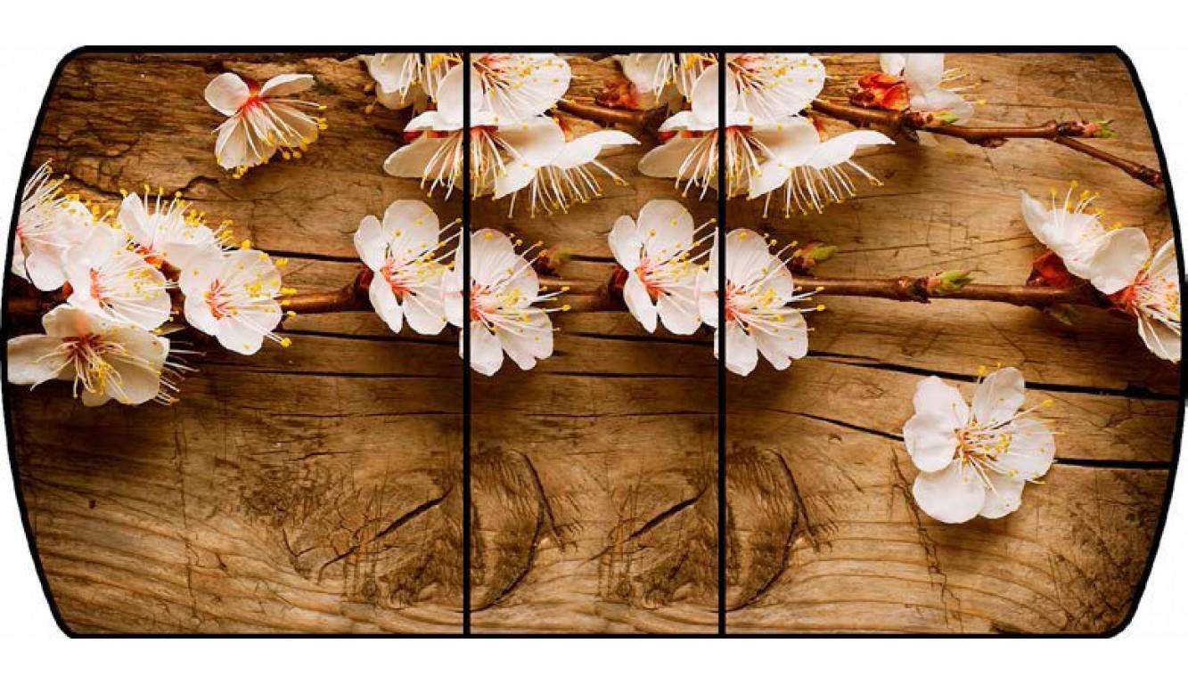 Стол кухонный раздвижной Ветки вишни 015